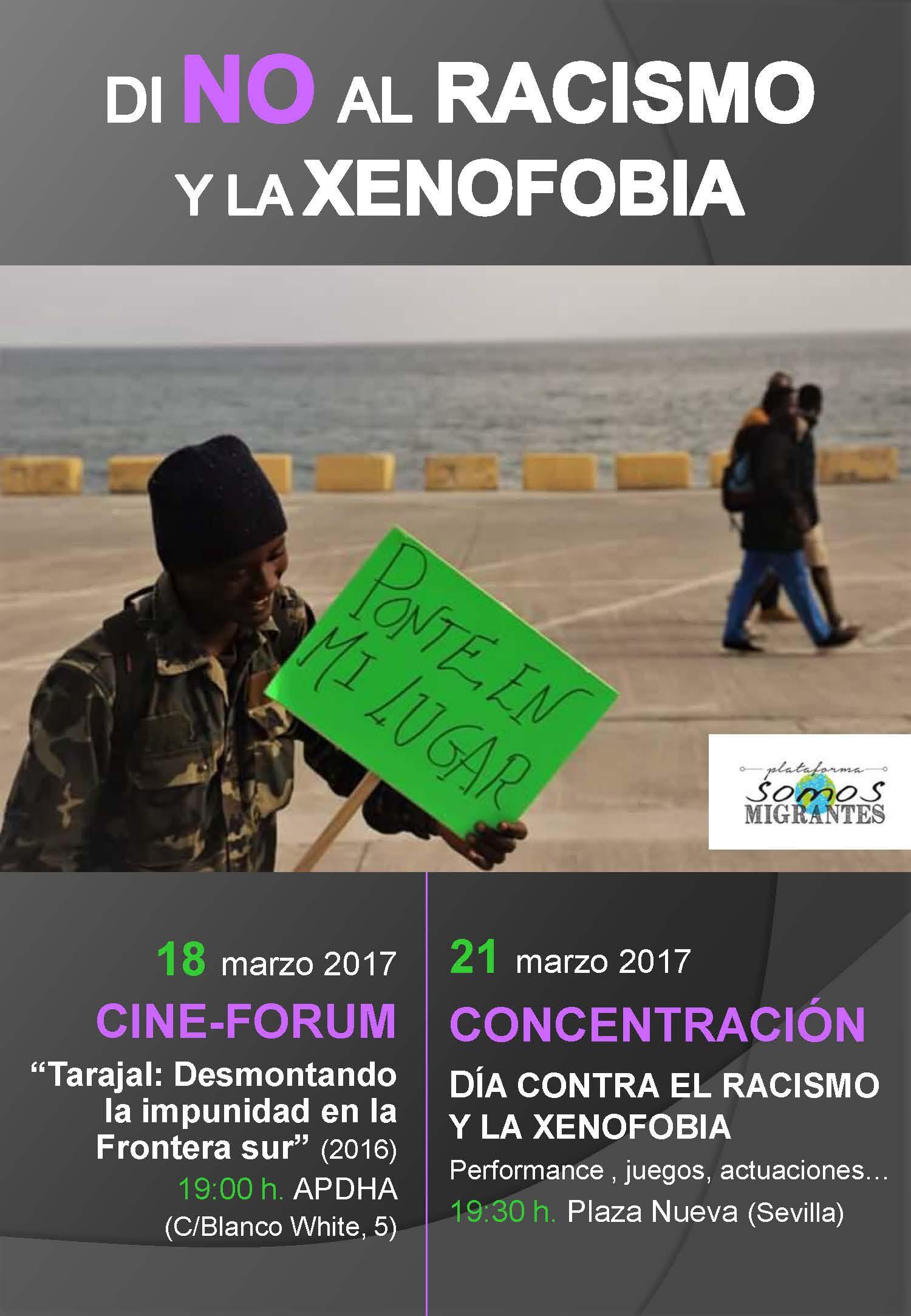 Actividades Contra El Racismo Y La Xenofobia Asociación Pro Derechos Humanos De Andalucía